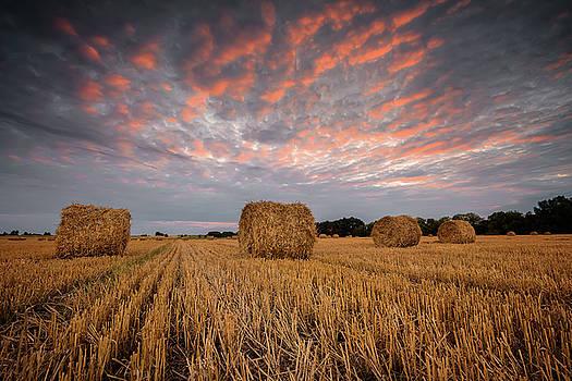 Autumn field by Evgeni Ivanov