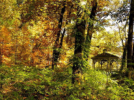 Autumn Gazebo by Bradley Smith
