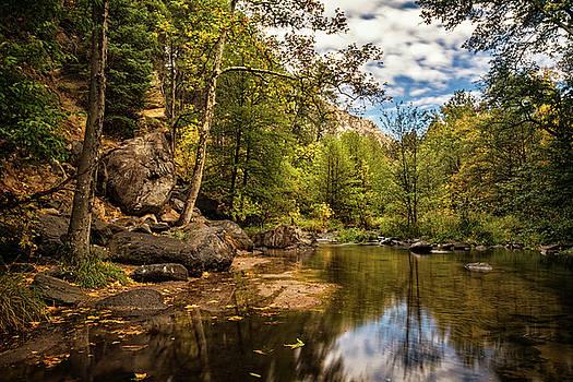 Saija Lehtonen - Autumn Creek Reflections