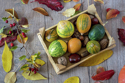Autumn still life with pumpkins and leaves on old wooden backgro by Julian Popov