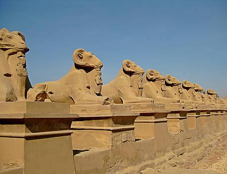 John Malone - Avenue of the Sphinx