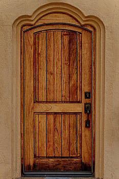 Guy Shultz - Back Door