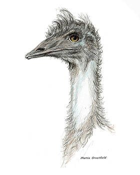 Bad Leroy Brown the Emu by Mamie Greenfield