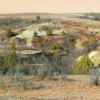 Badlands Prairie Reverie by Cris Fulton