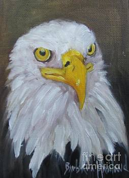 Bald Eagle by Barbara Haviland