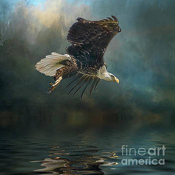 Bald Eagle swooping by Brian Tarr