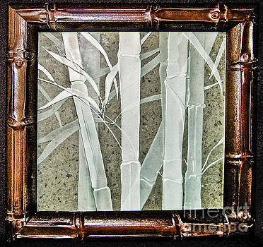 Bamboo by Alone Larsen