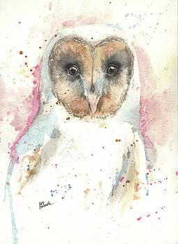 Barn owl by Angel Tarantella