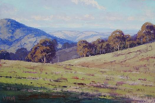 Bathurst Landscape by Graham Gercken