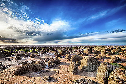 Beautiful seaweed rock outcrops on Norfolk coast by Simon Bratt Photography LRPS