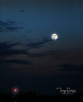 Beaver Moon by Tony Lopez