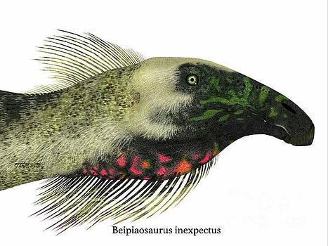 Corey Ford - Beipiaosaurus Dinosaur Head