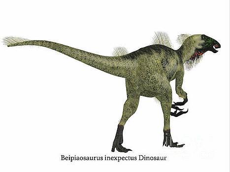 Corey Ford - Beipiaosaurus Dinosaur Tail