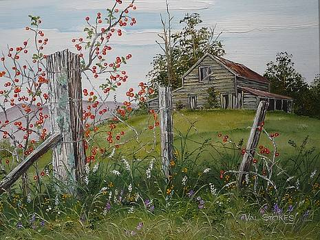 Berry Barn by Val Stokes