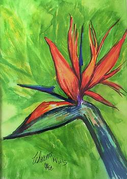 1 Bird of Paradise by Charme Curtin