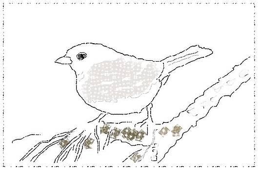 Bird Sketch 7b by Shishir Thadani