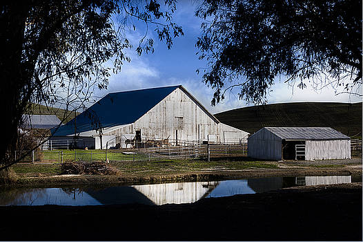 Bruce Bottomley - Birds Landing Barn