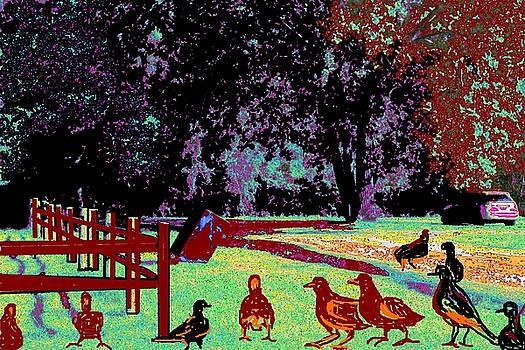 Anand Swaroop Manchiraju - BIRDS MEET