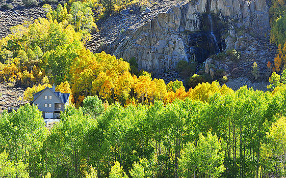 Bishop Creek California by Dung Ma