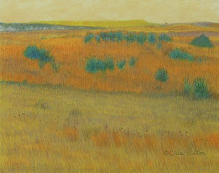 Black Butte Prairie Dream by Cris Fulton