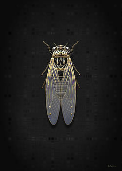 Serge Averbukh - Black Cicada with Gold Accents on Black Canvas