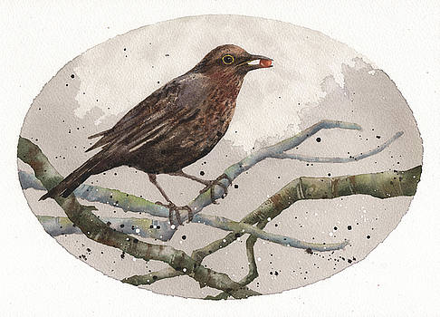 Blackbird Painting by Alison Fennell