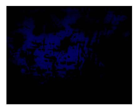 Blau by Doug Duffey