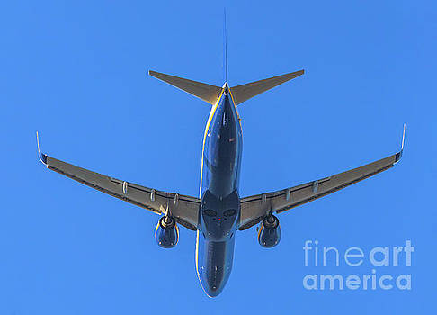 Blue Airplane Takeing Off by Benny Marty