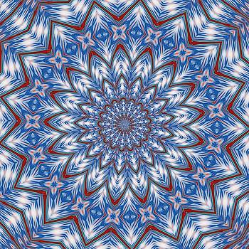 Tracey Harrington-Simpson - Blue Red and White Kaleidoscope Pattern