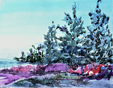 Blue Ridge Mountains by Mindy Newman