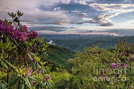 Blue Ridge Parkway. by Itai Minovitz