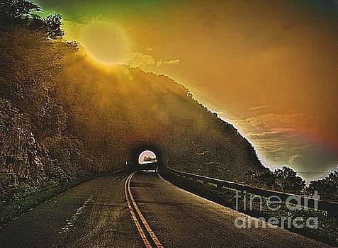 Blue Ridge Parkway by Janice Spivey