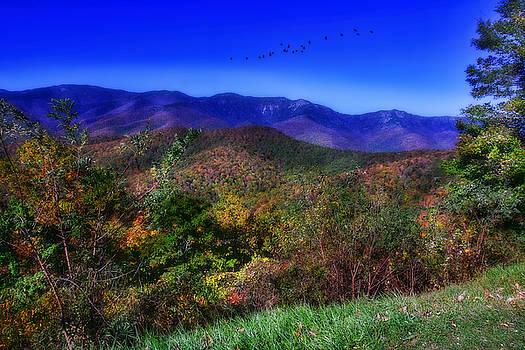 Blue Ridge Parkway by Joan Bertucci