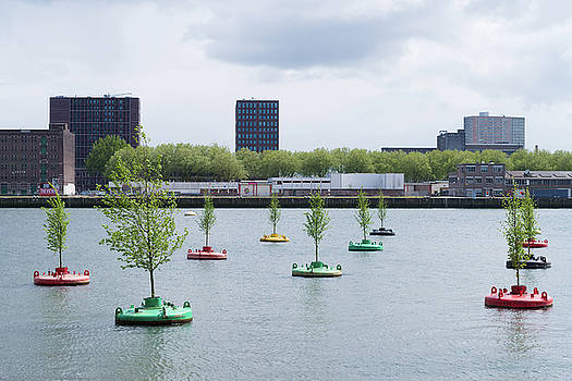 Bobbing Forest In Rotterdam by Hans Engbers