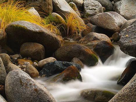 Brandy Creek Cascades by Michele James
