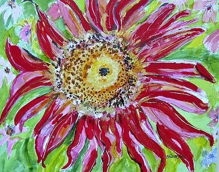 Bright Red Gerbera Daisy by Barbara Pearston