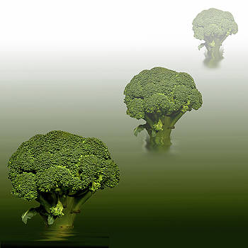 Broccoli Green Veg by David French