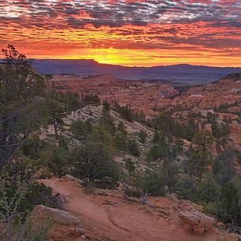 Bryce Canyon Sunrise by Stephen  Vecchiotti