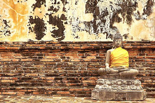 1 Buddhas by Robin Cuervo