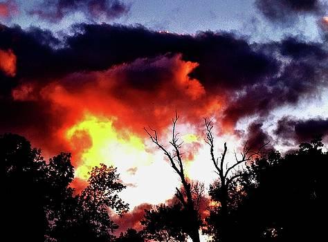 Burn by Chris Dunn