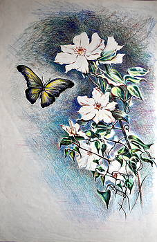 Butterfly and Clematis Vine by Susan Moore