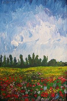 Campo di fiori by Alberto V  Donati