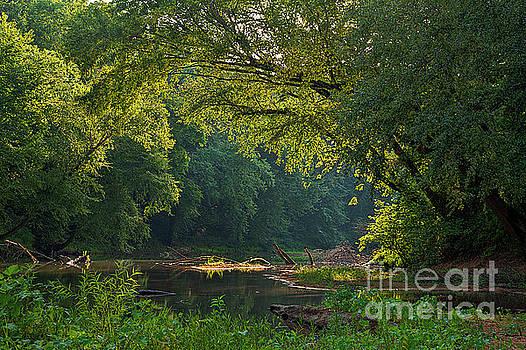 Larry Braun - Castor River