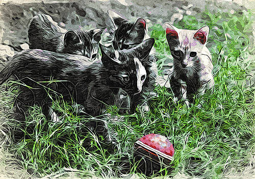 Bliss Of Art - Cats and the ball