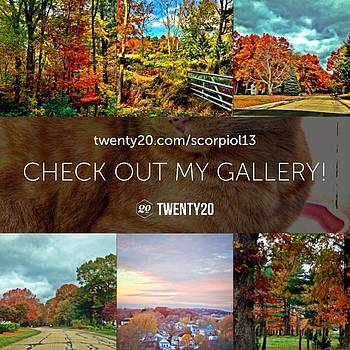 Check Out My Twenty20 Gallery! by Lisa Pearlman