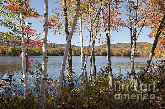 Jonathan Welch - Cheshire Lake