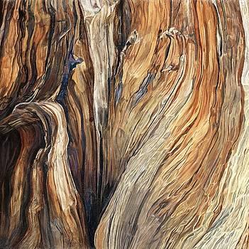 Cheval de Bois by Carina Mascarelli