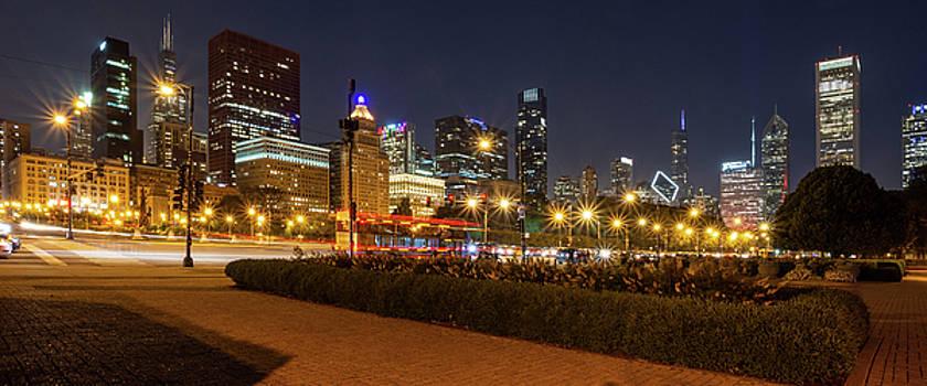 Chicago Skyline by David Hart