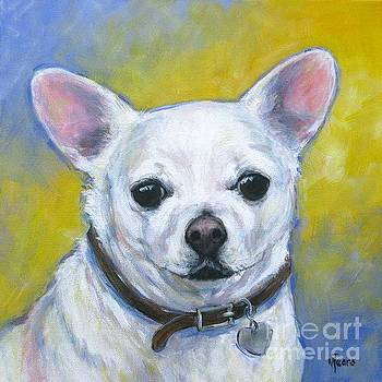 Chihuahua by Vickie Fears