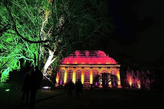 Christmas at The Botanics 17 by Nik Watt